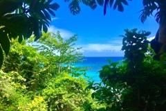 Blick-auf-das-Meer