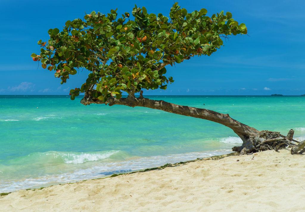 Jamaika Rundreisen relaxen am Sandstrand