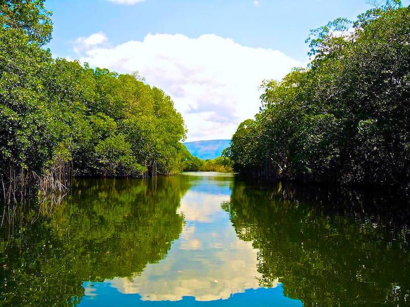 Jamaika Sehenswürdigkeiten Black River