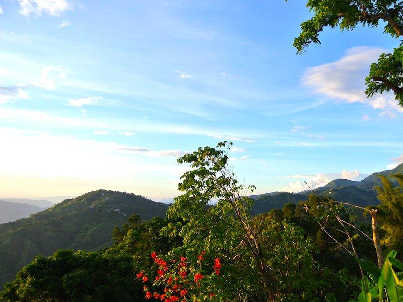 John Crow & Blue Mountains National Park Jamaika
