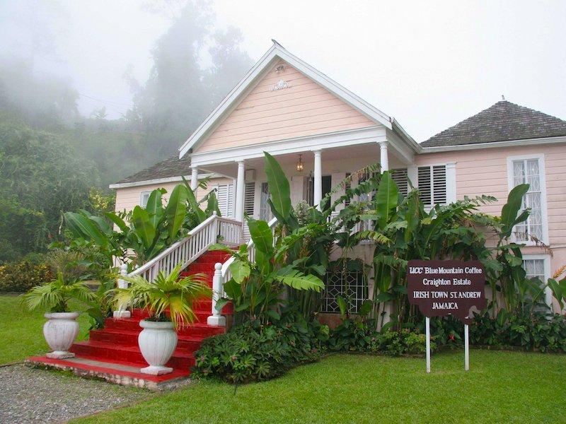 Blue Mountain Coffee Craighton Estate