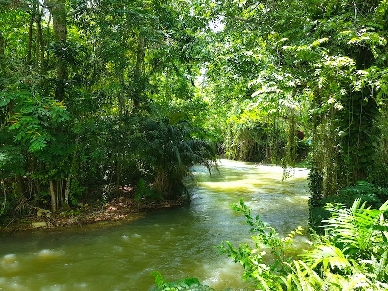 Jamaika Reisebericht, Martha Brae River